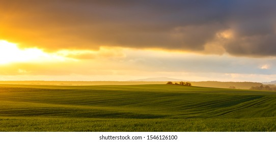 hazy rural evening landscape with golden light and grey hills in the background and field with fresh green in foreground
