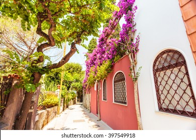 HDR image of narrow street on Capri island