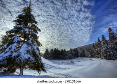 HDR image of winter snow scene in New Brunswick, Canada.