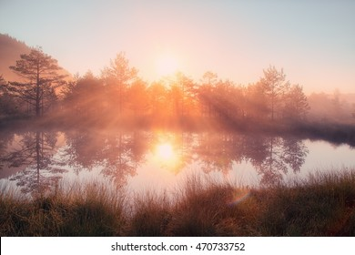 HDR photo of a beautiful sunrise taken against the rising sun