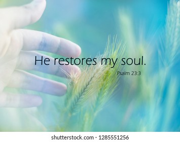 'He restores my soul' quote on nature background