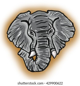 head of african Elephant gray