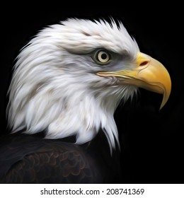 The head of bald eagle, haliaeetus leucocephalus, isolated on black. Side face portrait of American eagle, US national character. Amazing illustration. Great for user pic, icon, label, tattoo.