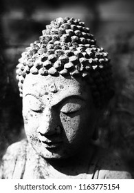 Head of Bhudda in Black and White