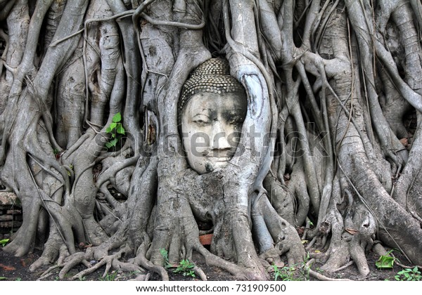 Head of Buddha statue in the tree roots at Wat Mahathat temple, Ayutthaya, Thailand. Ayutthaya historical park
