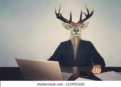 head deer's head. The concept of brainlessness and stupidity authorities or government. boss is a fool. stupid entrepreneur sitting at a table with a laptop phone and documents, unwise, thoughtless