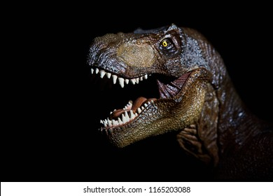 The head of dinosaur in the dark background