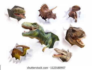 Head of the dinosaurs