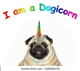 The head of the dog unicorn . I am a dogicorn. White background.
