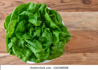 Head of fresh butter lettuce in a white bowl on a wood background