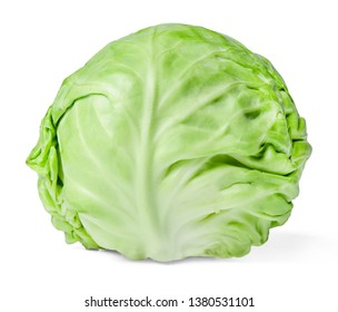 Head of fresh white cabbage isolated on white. Close-up. Side view.