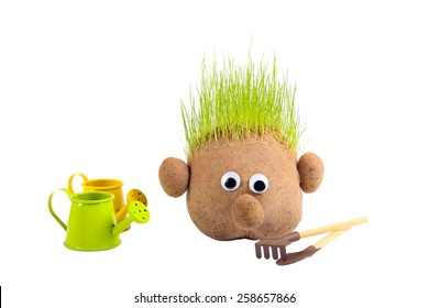 Head with grass and gardening tools on white background