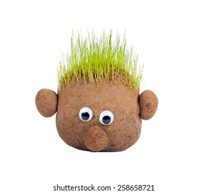 Head with grass on top over white background