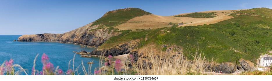 Head Land from the stunning Ceredigion Coast Path ( Cardigan Bay)