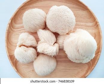 Monkey's head mushroom on wood dish with white background