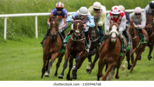 Head on view of galloping race horses and jockeys racing
