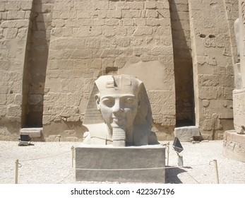 The head of the Pharaoh Ramses II before the entrance to Luxor temple.