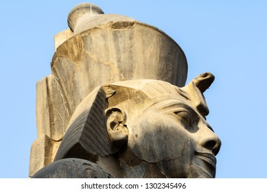 Head of Ramses II at the Luxor Temple, Egypt