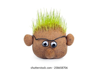 head shaped sack with grass on top over white background