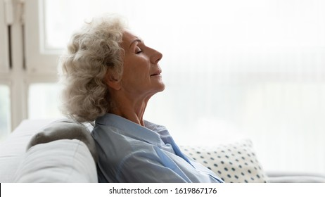 Head shot profile close up peaceful older woman sleeping, relaxing on comfortable couch with closed eyes, calm lazy mature female enjoying free time, weekend, resting in living room