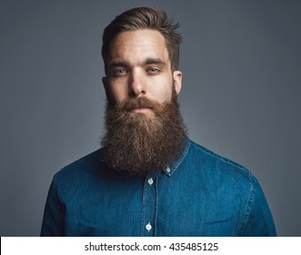 Head and shoulders straight on portrait of handsome bearded man in blue denim shirt and serious expression over gray background