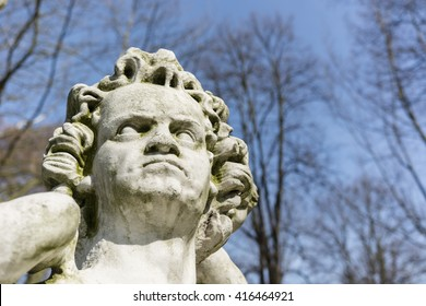 head of the statue of a man with curly hair