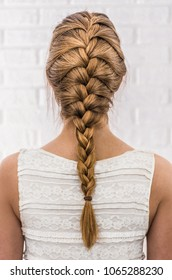 Head of a young woman from behind. Rear view braid