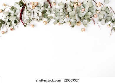 Header. Eucalyptus branches and pink rose buds on white background. Flat lay, top view. Floral composition