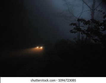 Headlights on a Misty Tropical Road at Night