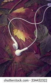 Headphones on beautiful autumn leaves