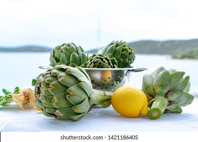 Heads flowers of fresh raw green artichokes plants from artichoke plantation, new harvest in Argolida, Greece, ready to cook with fresh lemon