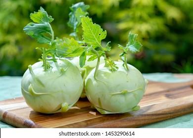 Heads of fresh ripe bio white cabbage kohlrabi from organic farm, close up