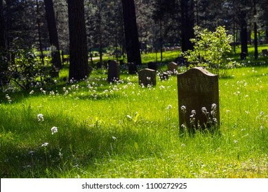 Headstone in the forest/Gentle light falling upon the tombstones amidst the grass and white flowers of the Skogskyrkogarden graveyard and forest.