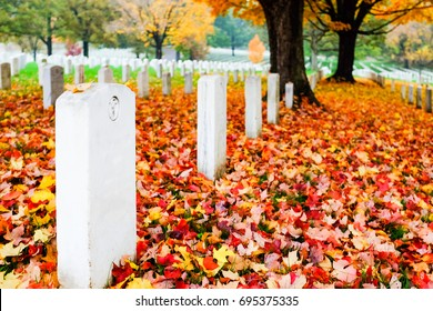 Headstones in Arlington National Cemetery in Autumn leaves - Circa Washington DC United States