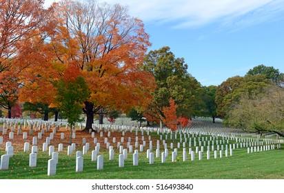 Headstones in Arlington National Cemetery in Washington DC, USA