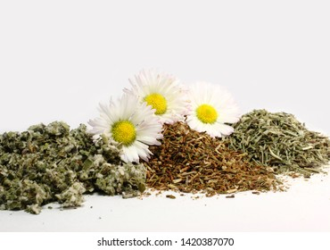 Healing dry herbs on white background. Plants chamomile, coltsfoot and horsetail isolated. Alternative medicine. Herbal treatments.