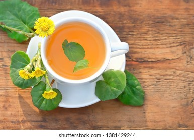 Healing herbal tea Coltsfoot. Fresh spring coltsfoot  flower with coltsfoot tea on wooden table. Medicinal plant coltsfoot, Tussilago farfara, infusion in cup, leaves and flowers. top view,