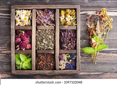 Healing herbs, herbal tea on a wooden tray, top view. Herbal medicine and phytotherapy