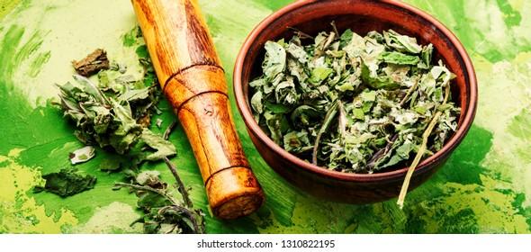 Healing herbs.Dry leaves of coltsfoot.Tussilago farfara.Herbal alternative medicine