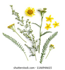Healing herbs. Medicinal plants and flowers bouquet of wormwood, elecampane, yarrow, tansy, St. John's wort