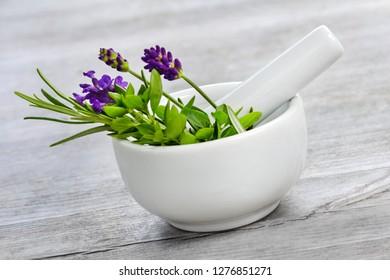Healing herbs and mortar