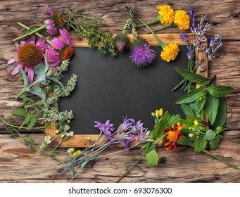 healing herbs, plants and flower on wooden background.