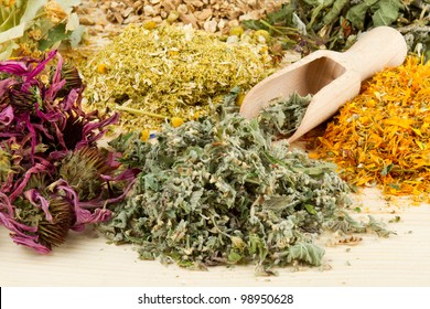 healing herbs with scoop on wooden table, herbal medicine