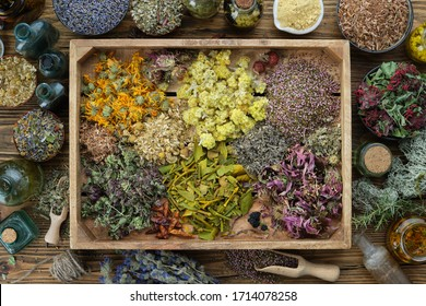Healing herbs in wooden box, infusion or oil bottles on wooden table, herbal medicine, top view.