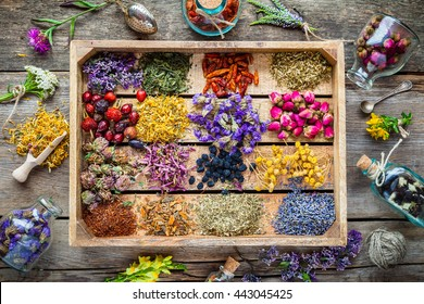 Healing herbs in wooden box on table, herbal medicine, top view. Flat lay.