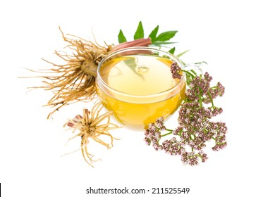 healing plants: Valerian (Valeriana officinalis) tea with roots, leaves and flowers