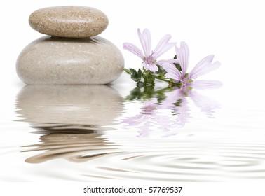 Healing stones and flowers in zen balance.