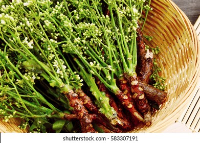Health Benefits of Neem flower or  Indian Lilac homoeopathic medicines and Kills Head Lice. Azadirachta indica flower in basket on wooden background.