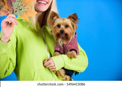 Health care for dog pet. regular flea treatment. Pet health tips for autumn. Girl hug cute dog and hold fallen leaves. Woman carry yorkshire terrier. Take care pet autumn. Veterinary medicine concept.