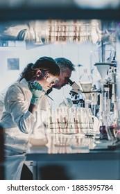 Forscher im Gesundheitswesen, die im Labor für Biowissenschaften arbeiten. Junge Forscherinnen und Senior-männliche Supervisor für die Vorbereitung und Analyse von Mikroskop-Folien im Forschungslabor.